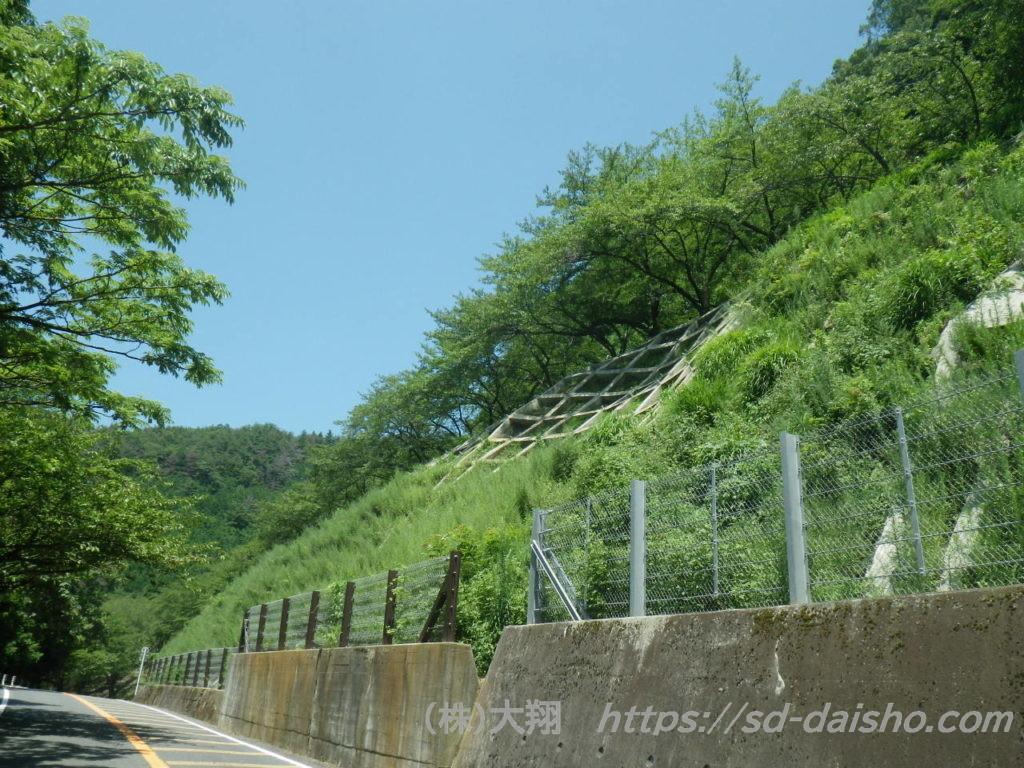 Vegetation of Crib Work